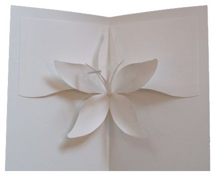 diy-tiger-lily-pop-up-card